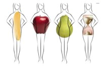 Which Body Type Do You Have