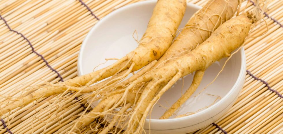 best dietitian lebanon, lebanon, diet, diet clinic, lose weight lebanon, lose weight, food, health, Ginseng