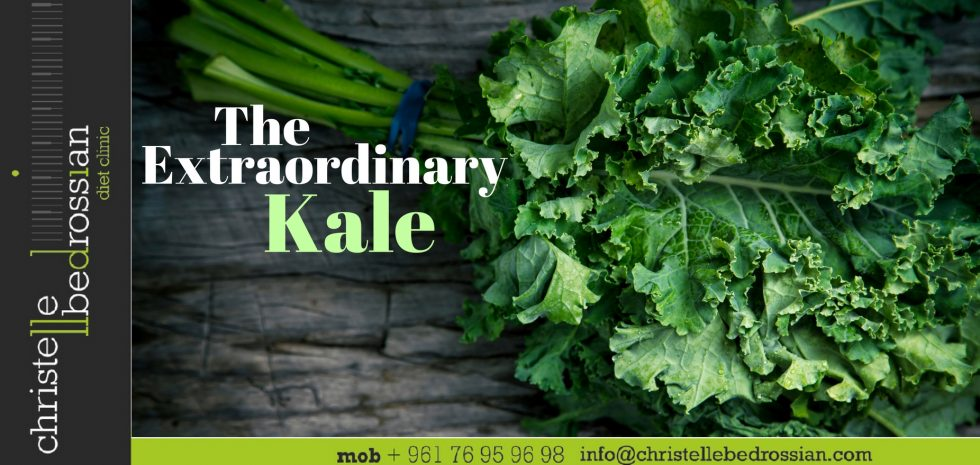 best dietitian lebanon, lebanon, diet, diet clinic, kale, health benefits, extraordinary food
